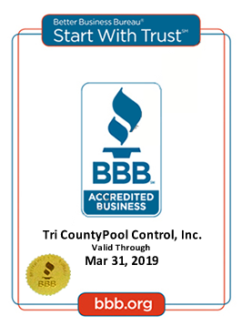 BBB Certificate of Excellence